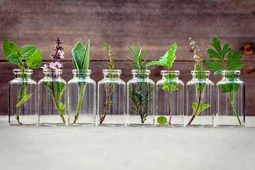 marketing olfactif parfum